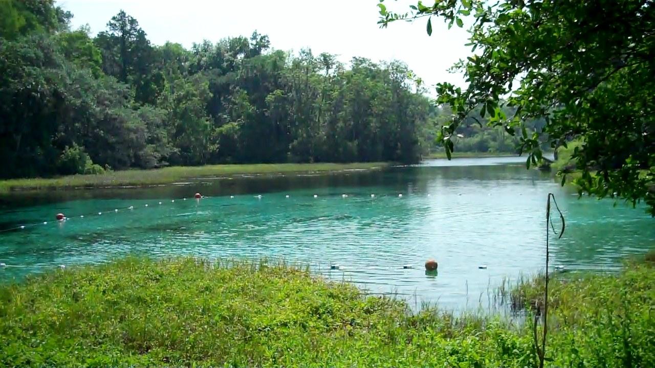 The Lagoon at Rainbow Springs